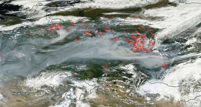 a map of wildfires in siberia