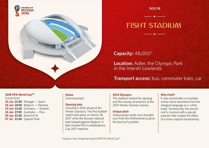 Fisht Stadium Infographic