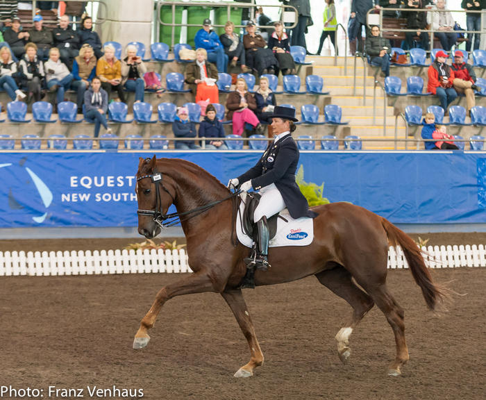 Lisa Martin equestrian