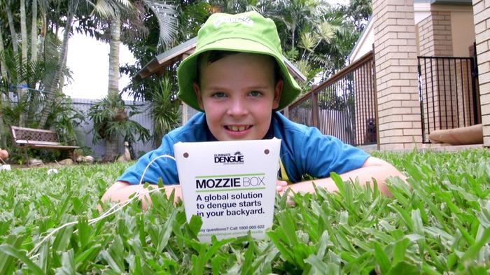 Mozzie Boxes are being used in Townsville.