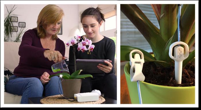 plant hearint technology
