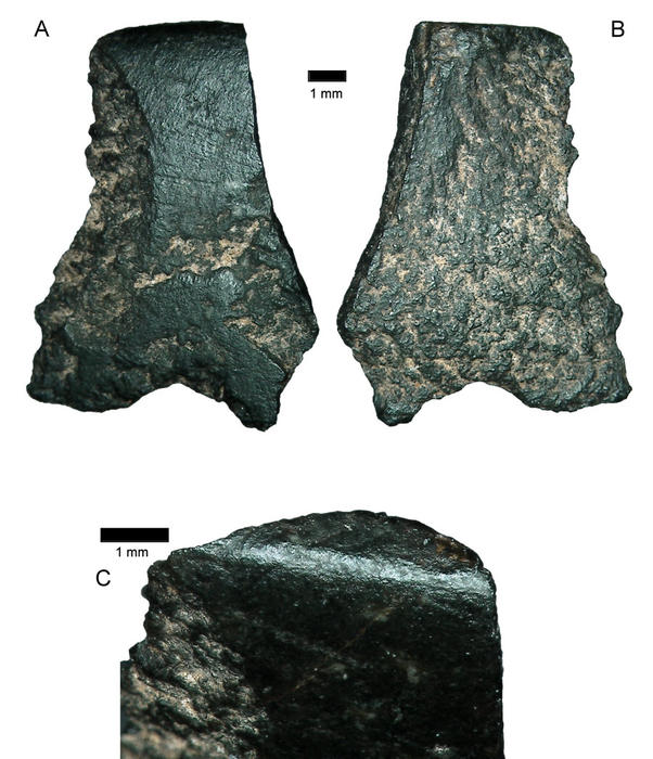 oldest axe fragment in the world