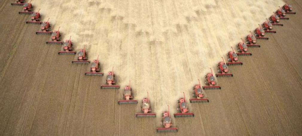 an armada of harvesters cuts through soybeans in brazil
