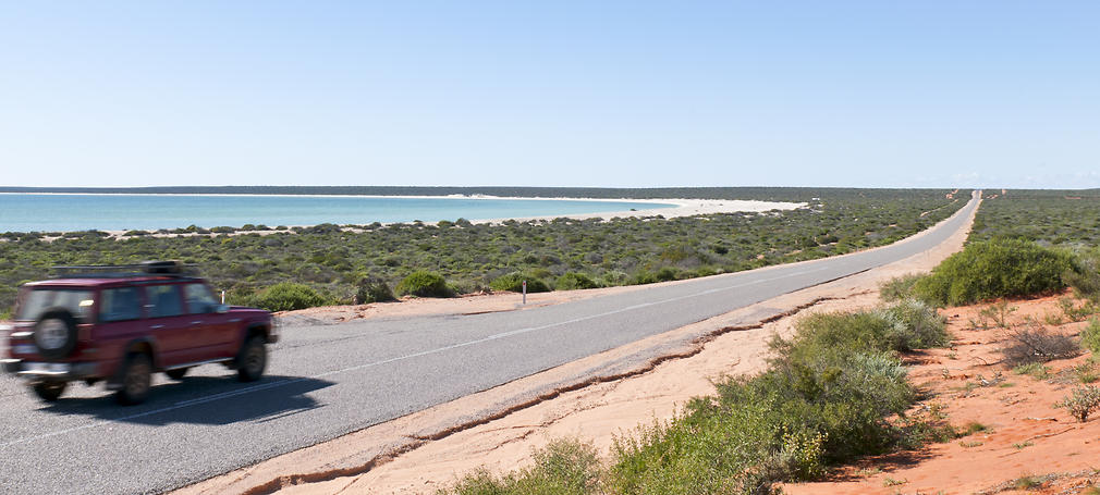A car drives along a coastal road with scrub either side.