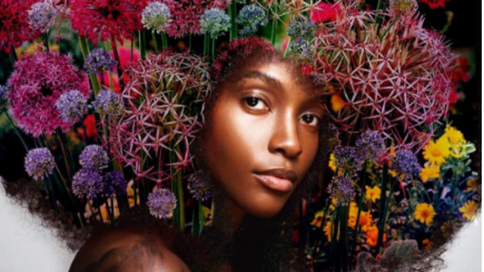Artist Celebrates The Natural Beauty Of African Hair With