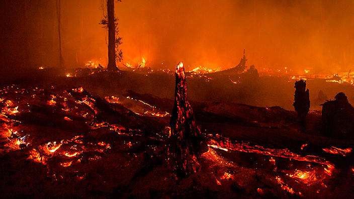 Fires in peatland forest, Indonesia.