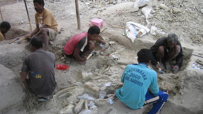 mata menge excavations underway