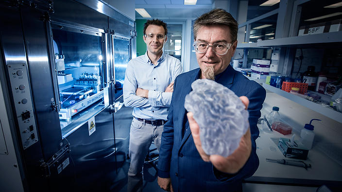 Intelligent Polymer Research Institute: Prof Gordon Wallace and Dr Stephen Beirne (rear) with a 3D printed brain model (University of Wollongong