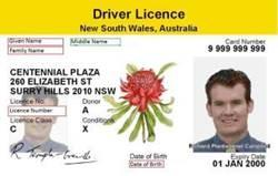 NSW - Driver Licence